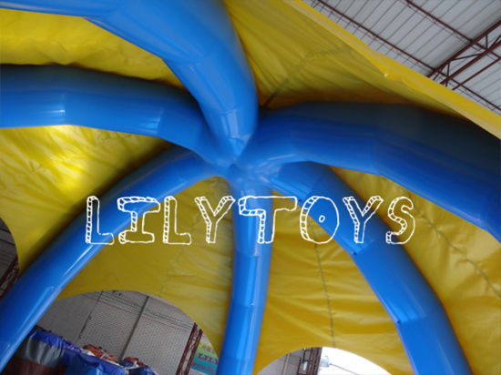 High Quality Inflatable Swimming with Tent pictures & photos