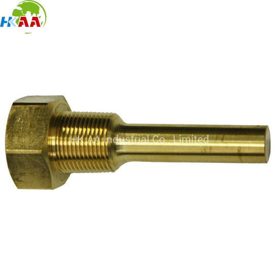 Precision Customized Brass Thermowell for Wireless Meat Thermometer pictures & photos