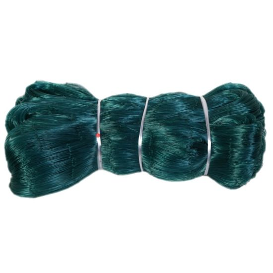 High Quality Nylon Fishing Net for Commercial Fishing pictures & photos