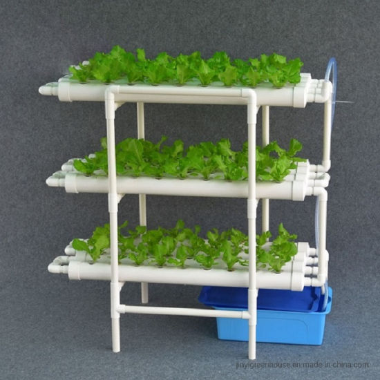 Hydroponic Growing Systems Indoor Three Layers Hydroponic System