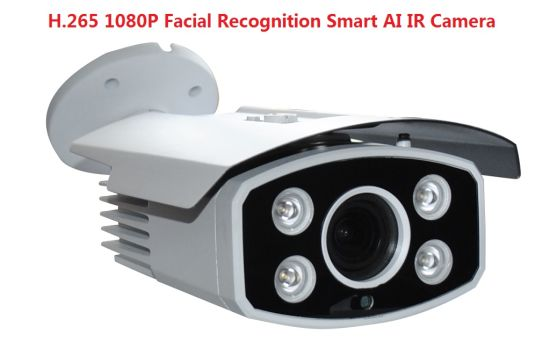 Fsan H. 265 2MP Smart IR Infrared Night Vision Face Recognition Attendance IP Camera