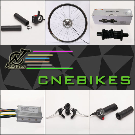 36V 250W Electric Bike Conversion Kit with Lithium Battery