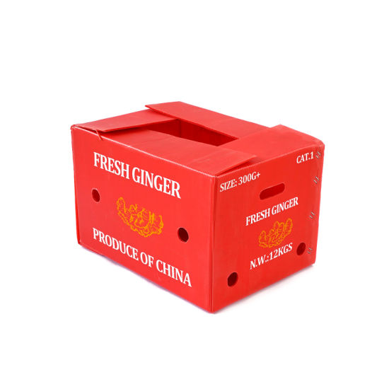 Plastic Corrugated Box Coroplast Storage Box Specialized Case