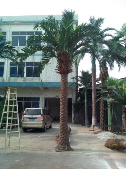 Artificial Plants and Flowers of Fan Palm Gu20170217125246 pictures & photos