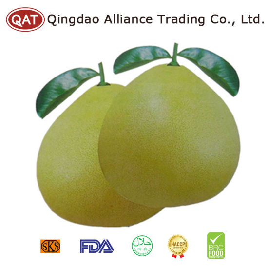 Top Quality Fresh Red Pomelo pictures & photos