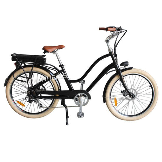 250W36V City Lithium Battery Electric Bike with Headlight (TDE-036S)