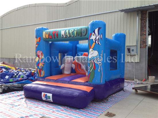 Hot Sale Small Inflatable Under Sea World Bouncer for Kids pictures & photos