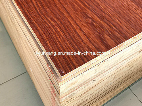 Film Faced Plywood Shuttering Plywood at Competitive Price