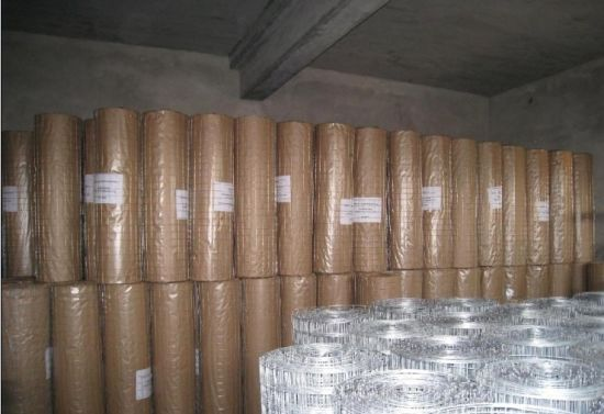 Galvaized/PVC Coated Welded Wire Mesh with ISO9001 ISO14001 and TUV Certification (Factory) pictures & photos