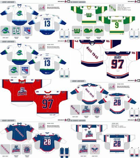 China Customized American Hockey League Hartford Wolf Pack Hockey ...