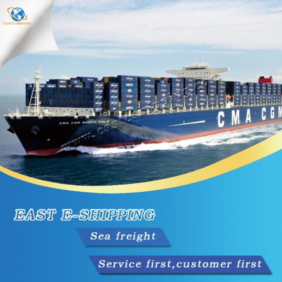 China Reliable Sea Logistics Service From Tianjin/Shanghai