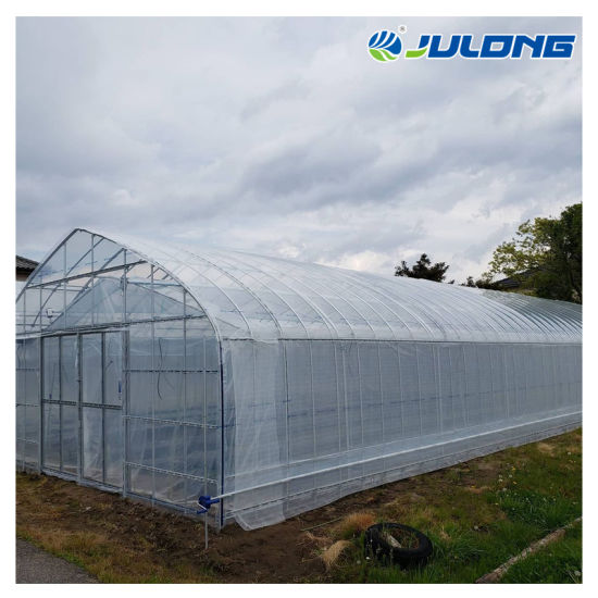 Best Selling Agricultural Plastic Film Tunnel Greenhouse for Vegetable Plants