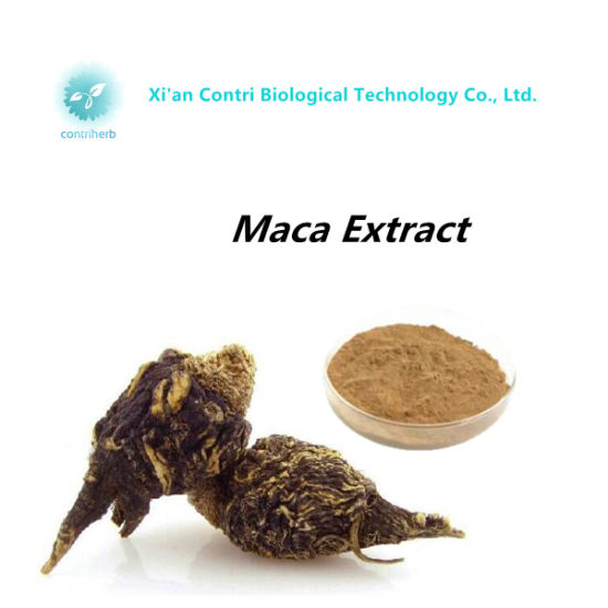 Pure Natural Maca Powder Extract pictures & photos