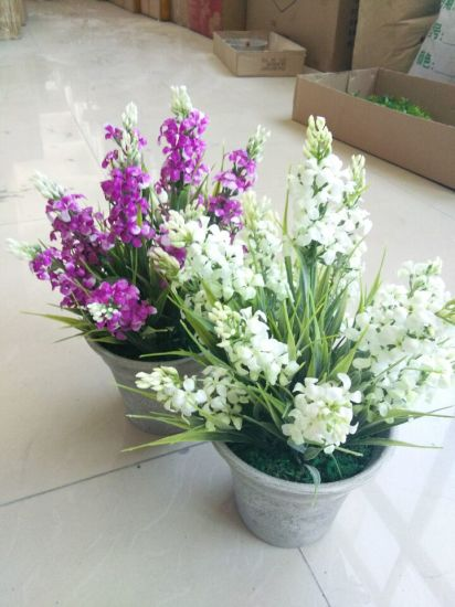 Artificial Flowers of Lavender Gu916215343 pictures & photos