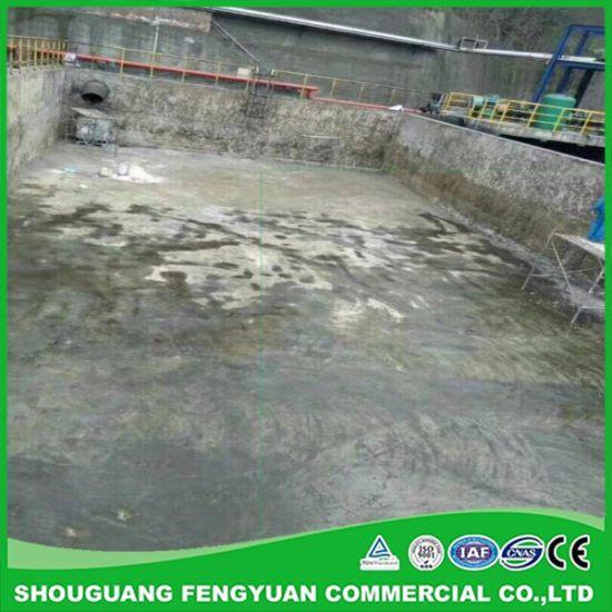 China Single Component Anticorrosion Brushable Polyurea