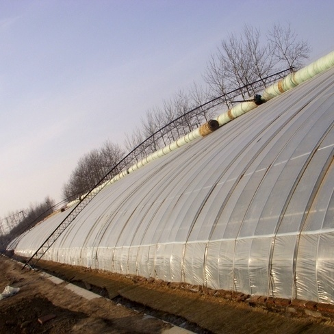 China Best-Selling Film Greenhouse for Vegetable/Tomato/Fruits pictures & photos