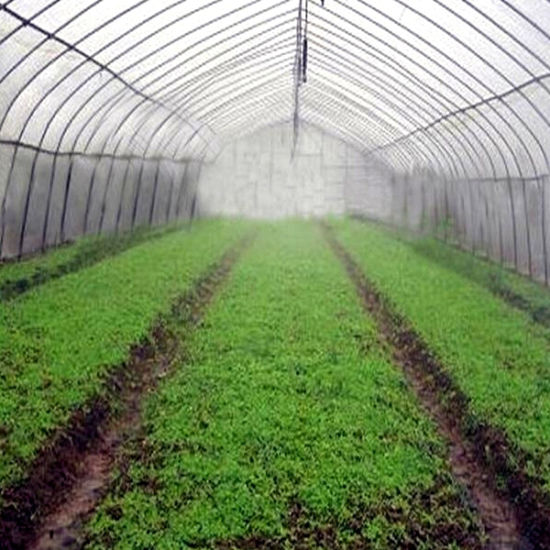 China Low Cost Fog System for Vegetable and Flowers