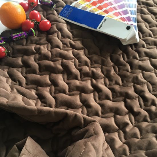 Quilted Fabric Lining Fabric for Home Textile pictures & photos