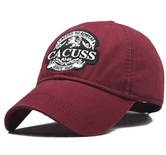 The Cheap Wholesale Baseball Sport Cap for Promotional