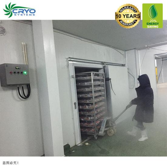 +10~-40c Banana Easy Installation Cold Storage Room Freezer Room for Frozen Soft Shell Crab Elephant Garlic