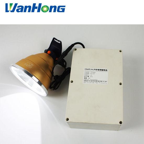 Rechargeable Battery Pack 12V 24V 36V 48V 50V 60V 72V Lipo Battery 20ah 30ah 40ah 50ah 60ah LiFePO4 Battery Pack Lithium Ion Battery