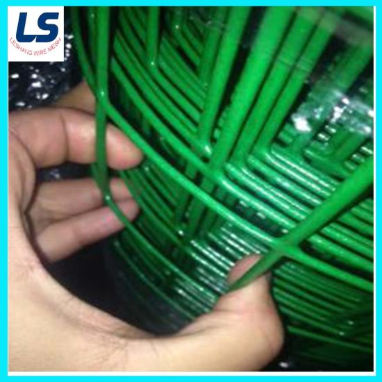 China Factory Wholesale Powder Coated Welded Wire Mesh for Birds Cages
