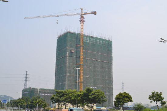 Qtz80 (TC6013B) Good Quality and Competitive Price Tower Crane