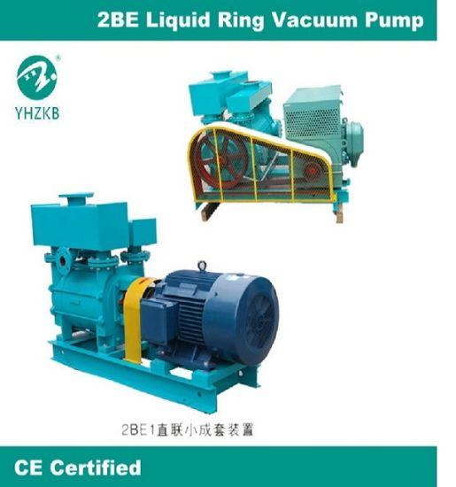 China Big Capacity Liquid Ring Vacuum Pump and Compressor for Paper