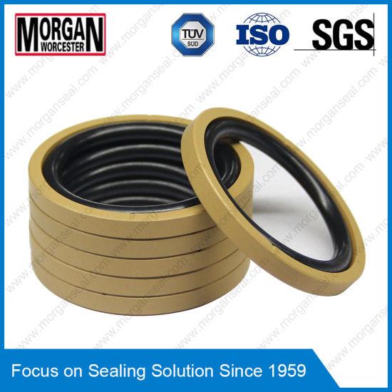 China NBR/FKM+PTFE Hydraulic Piston Seal OE Type Rubber Ring - China ...