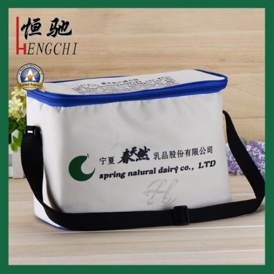 Promotion Gift Ice Cool Bag for Frozen Food