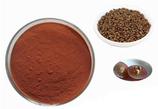 Natural Grape Seed Extract Powder Plant Extract CAS No. 84929-27-1 pictures & photos