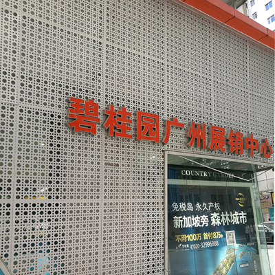Perforated Aluminum Sheets for Facade Decorations pictures & photos