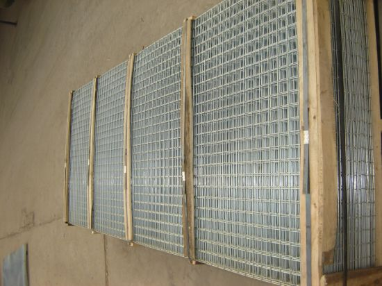 Galvanized Square Welded Wire Mesh Panel for Aviary Feeding