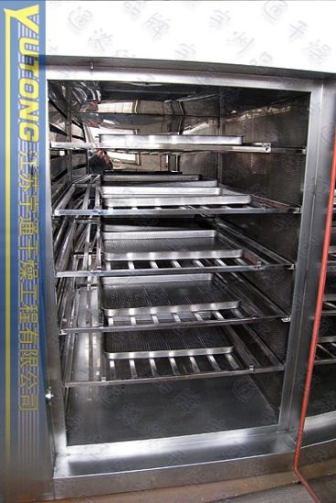 Dry Heat Sterlizer Oven for Vials pictures & photos
