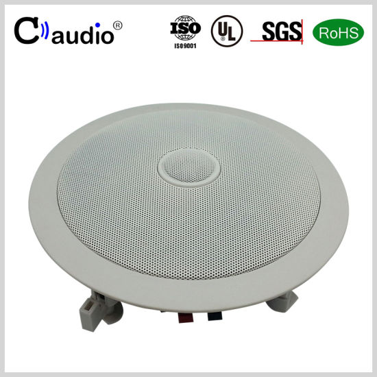 6.5 Inch Swiveling Tweeter Mini PRO Audio Loud Professional PA Active Ceiling Speaker Box with PP Cone for C6258