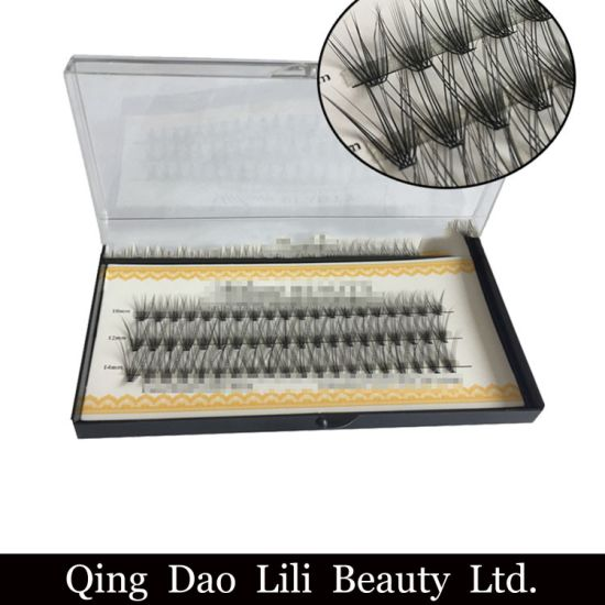 2b268063568 Wholesale Premade Volume Fan Lashes Individual Eyelashes Cluster Eyelash  Extension 2D-10d pictures & photos