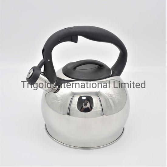 High Quality Stainless Steek Coffee Kettle Silver Kettle Tgk2921