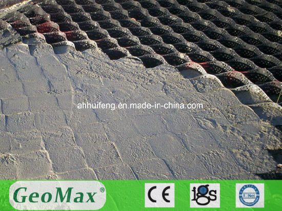 China Plastic Geocell Concrete Grass Pavers for Sale - China