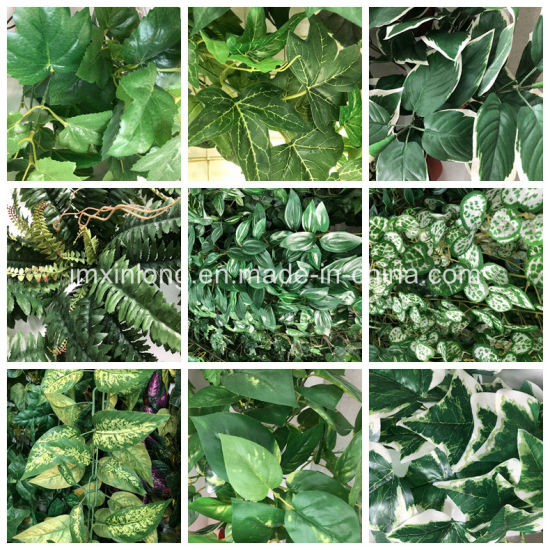 High Rated Artificial Plant Begonia Leaves pictures & photos