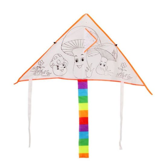 All Kinds DIY Drawing Kite for Supermarket pictures & photos