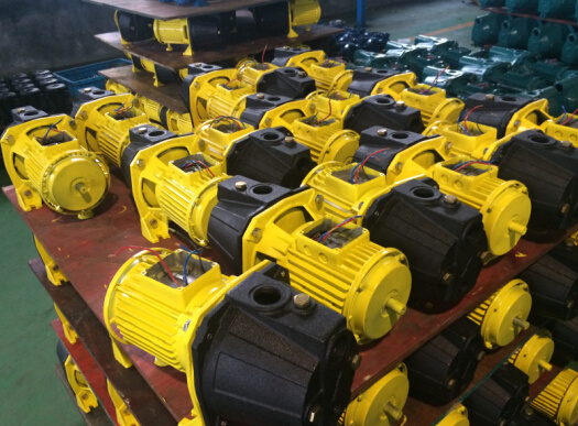 Jet Self Priming Electric Water Pump for Irrigation (JET-100P) 0.75kw/1HP pictures & photos