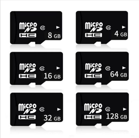 High Speed Full Capacity Memory SD Card for Custom Logo Micro Memory SD / TF Card