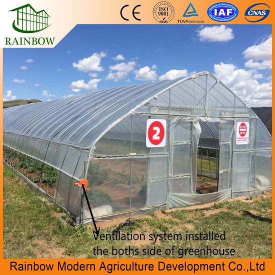 Pe Po Plastic Hydroponic Greenhouse For Vegetable Growing