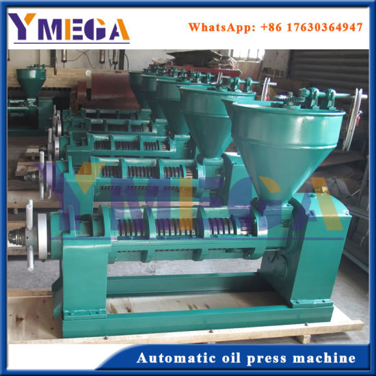 Top Quality Screw Cold Oil Press with Competitive Price pictures & photos