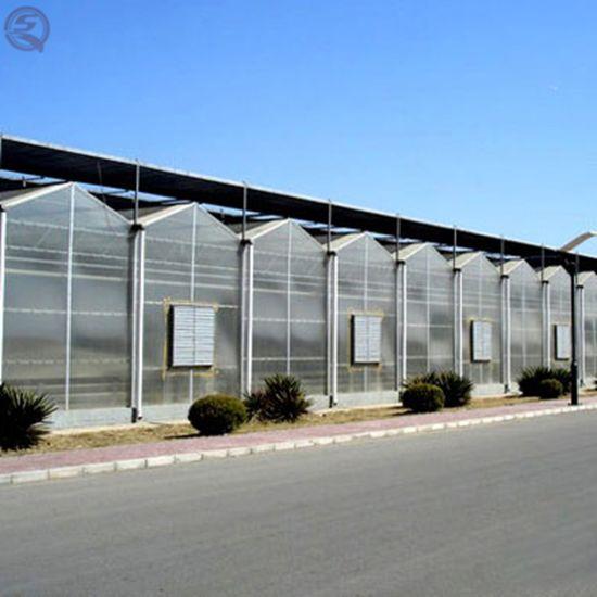 China Venlo Aluminum Profiles Polycarbonate Ready Garden Green House