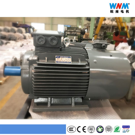 Variable Frequency VFD Control Three Phase AC Eletcric Motor Yxvf180 11kw 15kw 18.5kw 22kw Wnm Motor