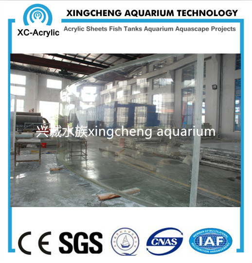 Customized Transparent Acrylic Sheet Aquarium Project pictures & photos