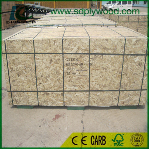 Good Quality and Cheap Price OSB1, OSB2, OSB3 pictures & photos