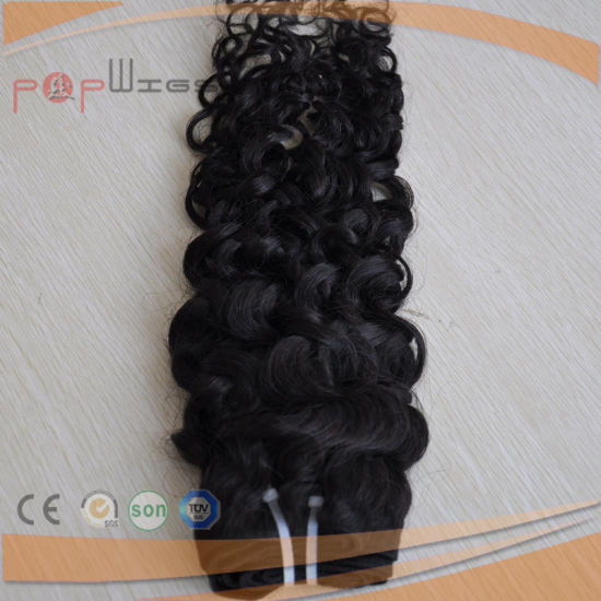 Indian Hair Best Natural Wavy Hair Weft (PPG-l-063) pictures & photos