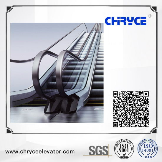 Outdoor 35 Degree Automatic Passenger Elevator Escalator with Good Price and Quality